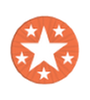 TotalCommunityAllStar LithyAward2.png