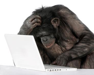monkey_computer_perry_hall_pc_repair.jpg
