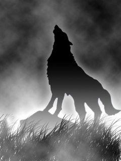 Ar.wolf.jpg